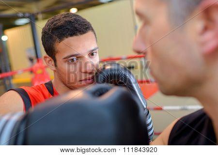 aspiring boxing champ