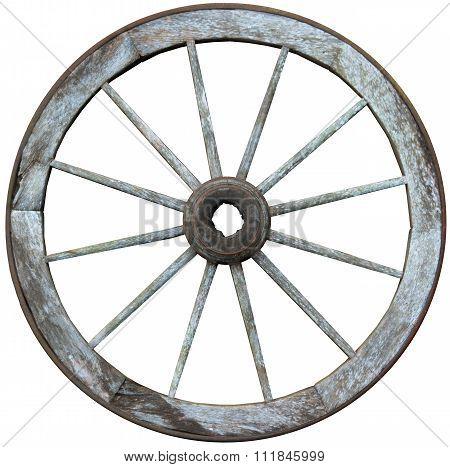 Twelve Spoked Timber And Steel Wagon Wheel
