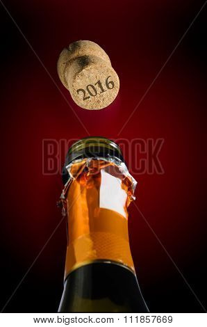Champagne For The 2016 New Year