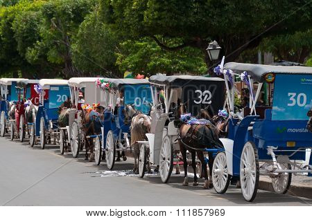Array of old horse carriages on the streetof Granada