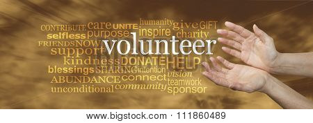Volunteer Request Word Cloud