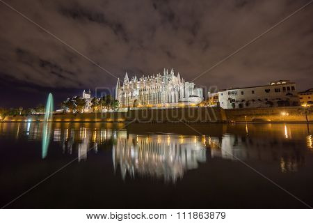 Majorca cathedral in Balearic Islands night scene