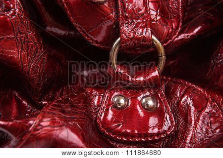 Buckle Of A Women Bag Background