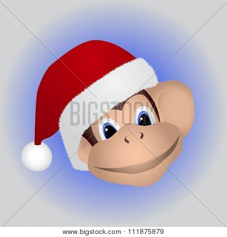 Monkey in a cap Santa
