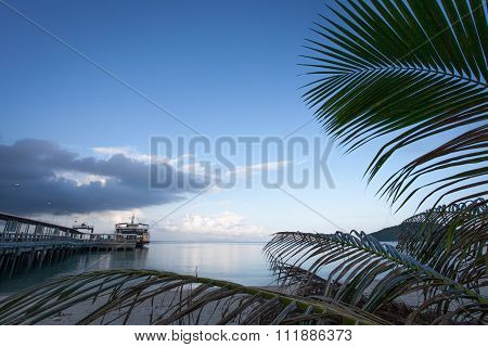 The Ferry Is At Berth Against The Blue Sky And Palm Trees.
