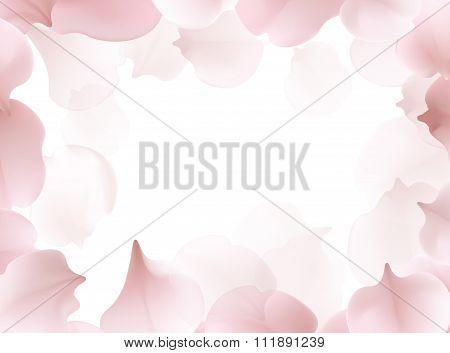 Beautiful Light Spring Frame Pattern With Pink Flying Petals Of Sakura - Japanese Cherry Tree.