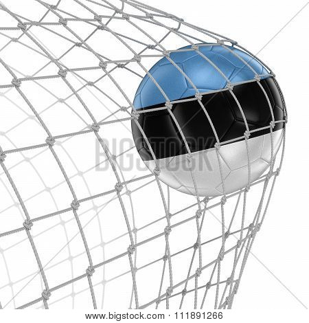 Estonian soccerball in net. Image with clipping path