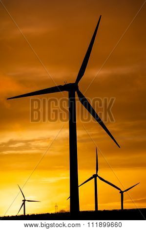 Silhouette Of Wind Turbines