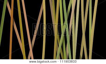 Ribbon Paper Background Yellow Black