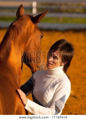 chestnut  horse and his rider