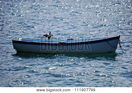 Cormorant On A Fishing Boat