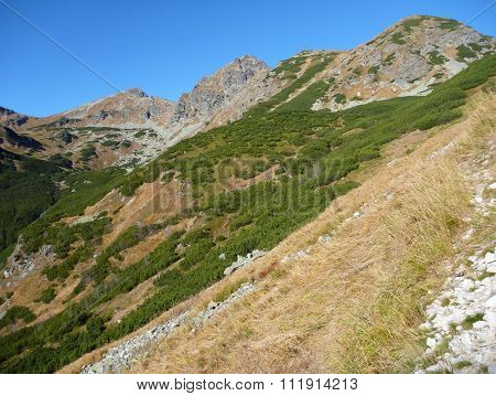 Summer Mountain Panorama In Tatry