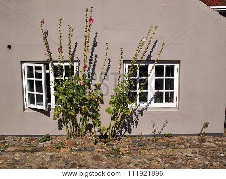 Traditional Danish Country Home With Flowers