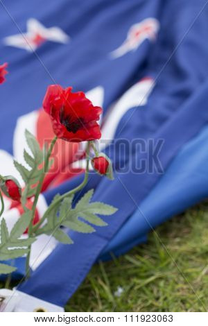 ANZAC Poppy and New Zealand Flag