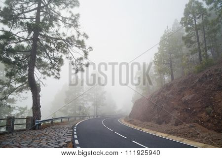 Mountain road in the fog. El Teide National Park. Tenerife Island. Spain