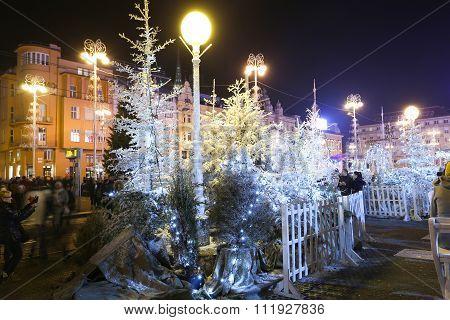 Advent Decoration On Jelacic Square