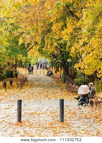Varna, Bulgaria - November 10: Authentic Landscape People Relax In The City Park In The Fall. Novemb