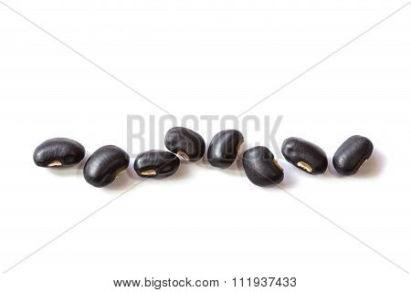 Close Up Black Bean Isolated On White
