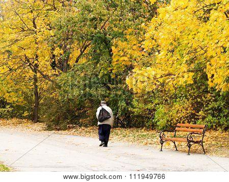 Varna, Bulgaria - November 10: An Authentic Landscape, An Elderly Man Walking Along A Path In A City