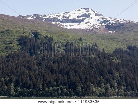 Alaska's Mountains and Forests