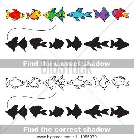 Different fishes set. Find correct shadow.