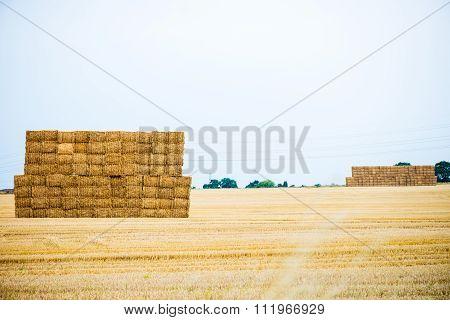 Large Pile Of Hay Bales