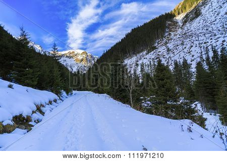 beautiful winter landscape in the Carpathian Romania