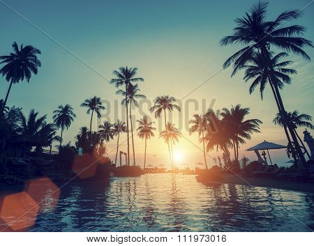 Tropical beach with palm trees during the awesome sunset.