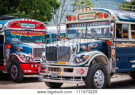 Blue and White Jeepney Bus standing
