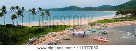 Boats and palm trees at the sand beach in front of ocean