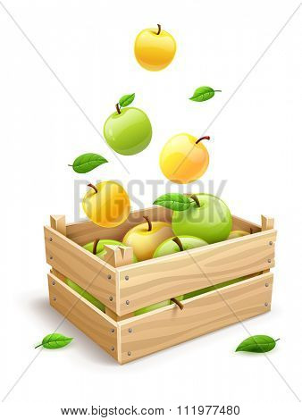 Ripe apple fruits falling into the wooden box. vector illustration. Isolated on white background. Transparent objects used for lights and shadows drawing.