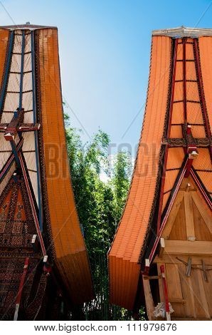 Two very Unique and Traditional houses of Tana Toraja with Buffalo horns on Sulawesi