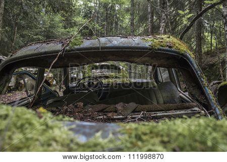 View Through A Car Wreck