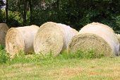 Hay bales on a green grass background