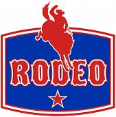 pic of bronco  - retro style illustration of an American Rodeo Cowboy riding a bucking bronco horse jumping with star and in background with words  - JPG