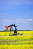 foto of nod  - Oil pumpjack or nodding horse pumping unit in Saskatchewan prairies Canada - JPG