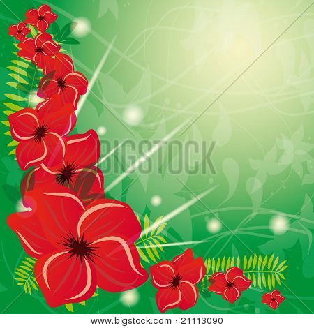Summer Background With Red Flowers