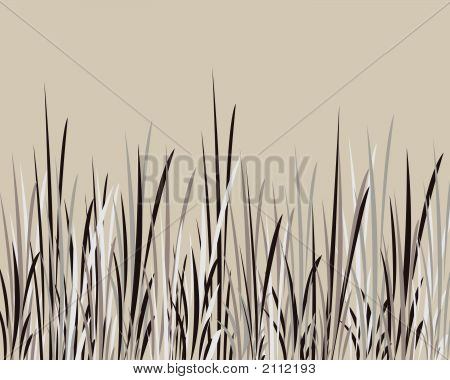 Whispy Black And Grey Grass Against Tan Background