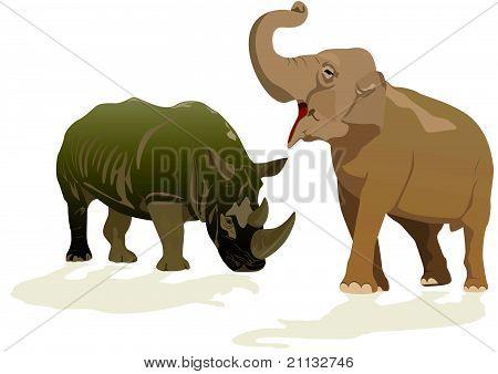 Elephant and rhino