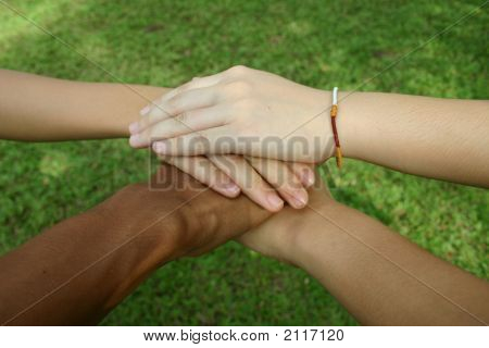 Multicultural Hands (Series)