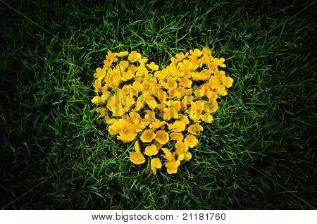 Heart Of Yellow Flowers