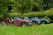 picture of mg  - Photo of classic cars at a show - JPG