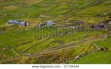 Rural Landscape On Dingle Peninsula