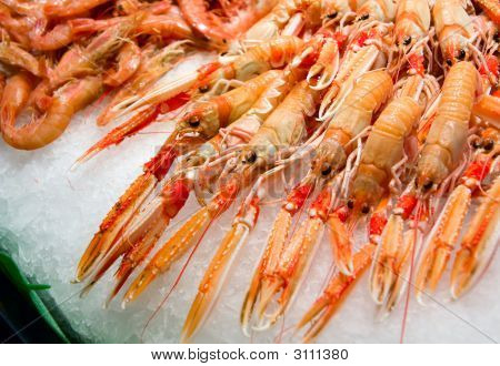 Red Lobsters And Shrimps On Ice