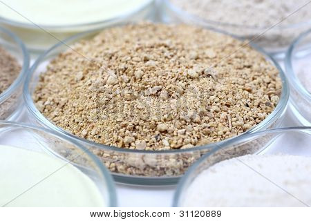Animal Food In A Glass Bowls