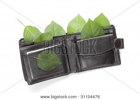 Eco Wallet On White