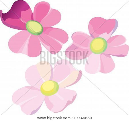 Set of three violet flowers