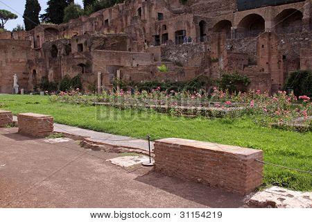 The Garden of the Vestal Virgins