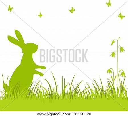 Easter bunny in the meadow