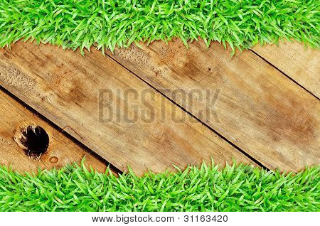 Grass Frame On Wood Hole